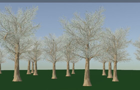 CG Circuit - Houdini Tree Rig With Vellum Leaves